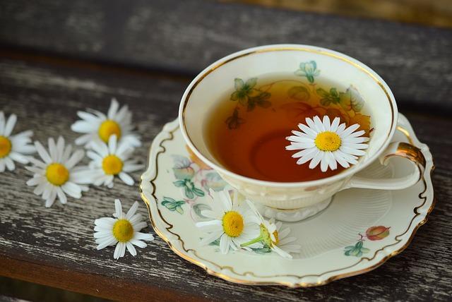 květy heřmánku.jpg